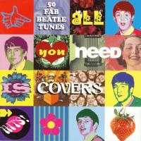 CD - Various Artists All you need is covers